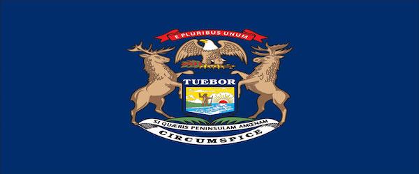 Bullion Laws in Michigan